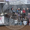 JAKE BROWN-807 SHADY NIGHTS-PRCA-SV-SN- (91)