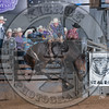 JAKE BROWN-807 SHADY NIGHTS-PRCA-SV-SN- (88)