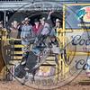 COLT ROBINSON-BBG-SA-RD2- (39)