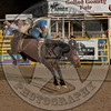 MATT CRUMPLER-223 HARRY'S GIRL-PRCA-GD-FR- (68)