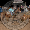 COUNTY TEAM ROPING TEAM # 3-PRCA-GD-SA- (30)