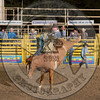 MIKE FRED-315 JESSE'S GIRL-PRCA-GD-FR- (33)