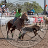 COUNTY TEAM ROPING TEAM #1-PRCA-GD-SN- (36)