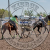 COUNTY TEAM ROPING TEAM #1-PRCA-GD-SN- (37)