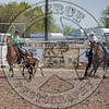 COUNTY TEAM ROPING TEAM #1-PRCA-GD-SN- (33)