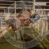 MATT CRUMPLER-223 HARRY'S GIRL-PRCA-GD-FR- (71)
