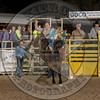 MATT CRUMPLER-223 HARRY'S GIRL-PRCA-GD-FR- (63)