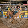 MIKE FRED-315 JESSE'S GIRL-PRCA-GD-FR- (32)