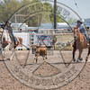 COUNTY TEAM ROPING TEAM #3-PRCA-GD-SN- (39)