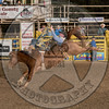 MIKE FRED-315 JESSE'S GIRL-PRCA-GD-FR- (34)