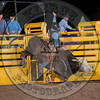 ROSS FREEMAN-128 DIRT PEDDLER-PRCA-LF-FR- (80)
