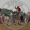 RALPH WILLIAMS-PRCA-LH-SA- (284)
