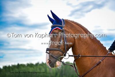 Tom von Kapherr Photography-1282