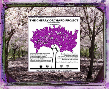 Cherry Orchard Project