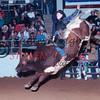3085-22c buddyREED TCF BeltonTx PRCA 1994