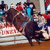 3773-23c buddyREED BeltonTx PRCA 1996
