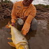 Salta, Argentina Dorado Fishing - Jim Klug Photos