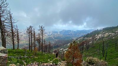 Mount Lemmon Tucson AZ southeast Arizona trip July 2021 IMG_E9137
