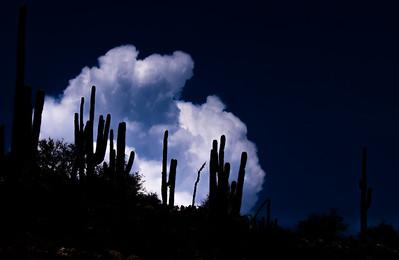 Mount Lemmon Tucson AZ southeast Arizona trip July 2021 IMGC9747