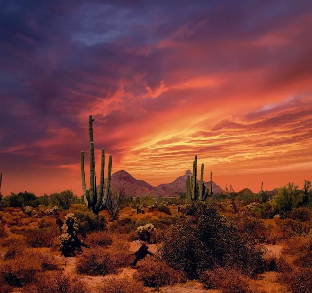 DESERT SUNSET MIXED MEDIA