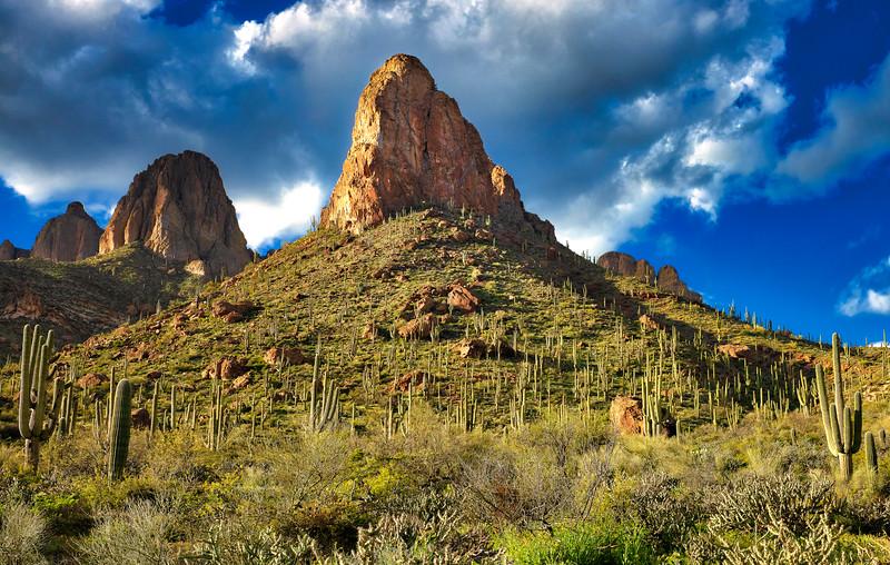 1536 Apache Trail