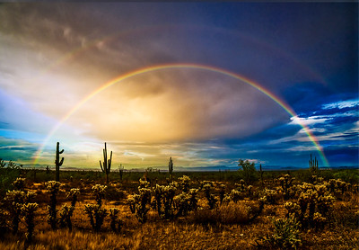 APRIL DESERT DOUBLE RAINBOW