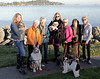 Denise Blondo, center,of Mill Valley,  with friends l-r Elainea Kauffman, Nancy Dobroski,Marlene Allen,Denis Blondo,K+Jane Mercer,Ellen Pappademas, Judy Barr, in Mill Valley,  Calif. on Wednesday, January 30, 2013. Judy Barr, right, organizes dog walking for Denise's dog twice a day while she is undergoing Chemotherapy.The neighborhood group meet in the afternoons to walk their dogs together and visit.(Jocelyn Knight Photo)