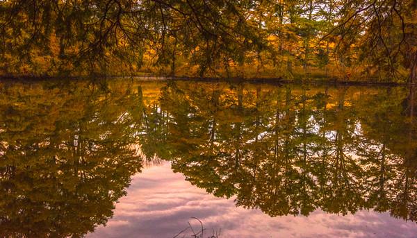 Autumn Lake 15