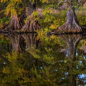 Autumn Lake 3