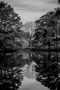 Autumn Lake 13