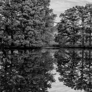 Autumn Lake 19