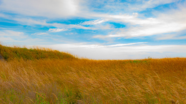 Prairie  3