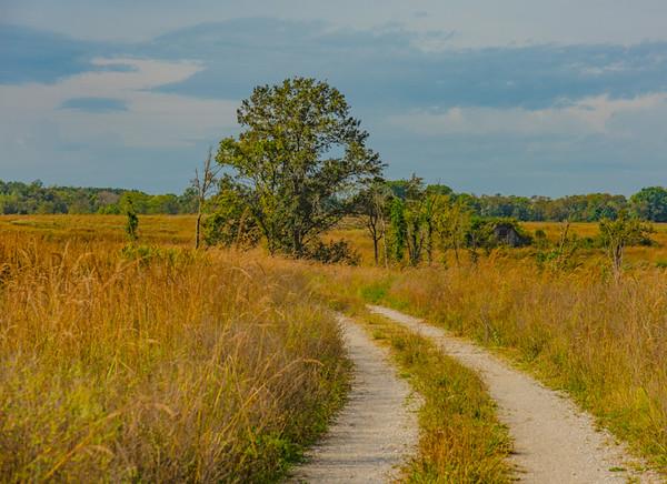 Prairie  18