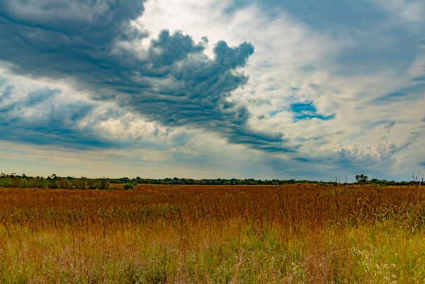 Prairie  12