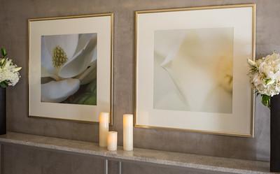 magnolia hotel stl