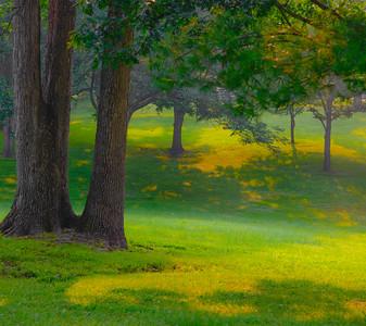 Tilles Park 17