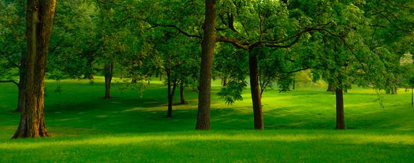 Tilles Park 20