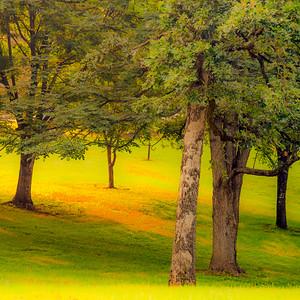 Tilles Park 16