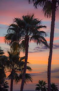 Vinoy Hotel Sunrise 3