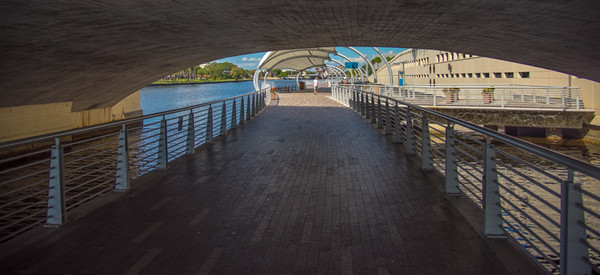 City of Tampa 19