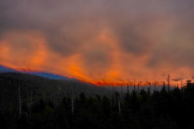 Smoky Mountains 92