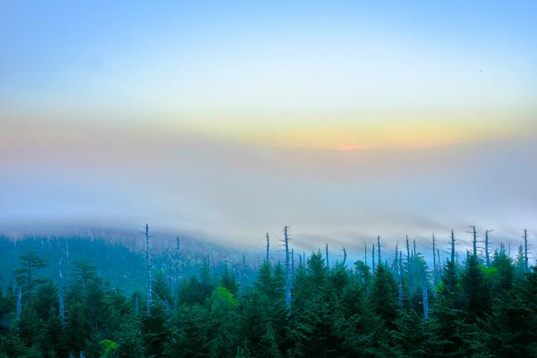 Smoky Mountains 82