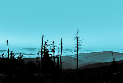 Smoky Mountains 66