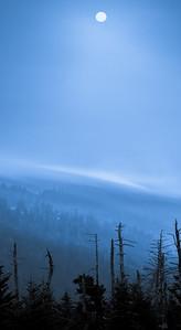 Smoky Mountains 100