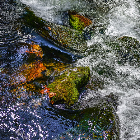 Smoky Mountains 248