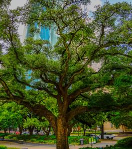 Houston 22
