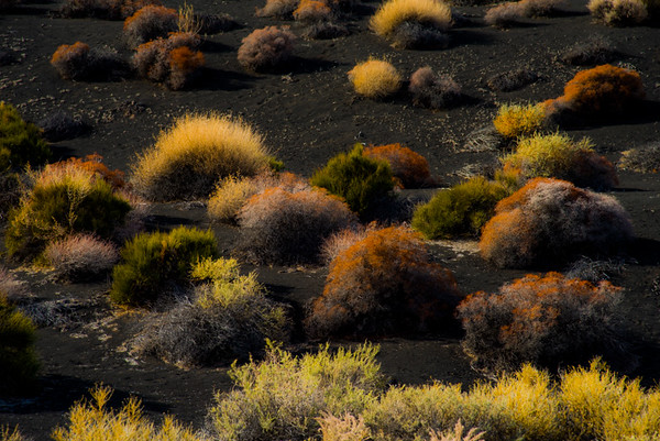 SUNSET CRATER 12