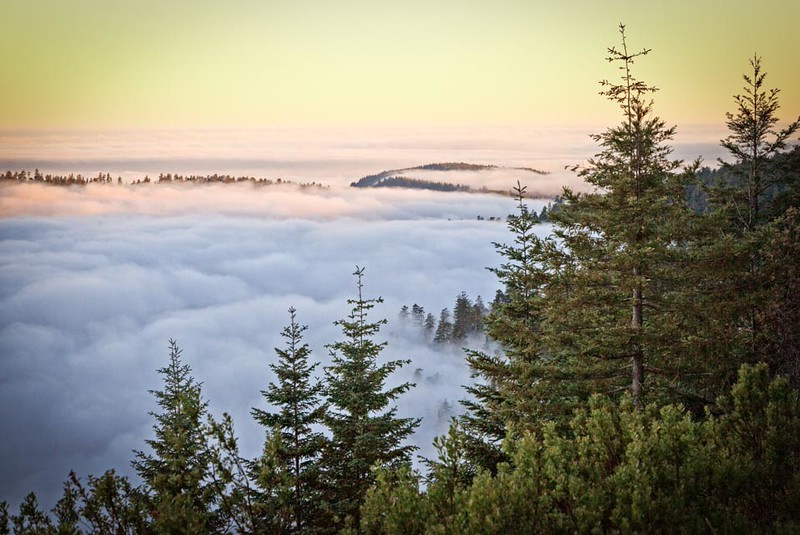 The Many Colors of Sunrise on the Mountain Fog