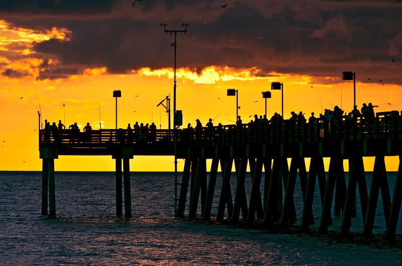 The Venice beach pier