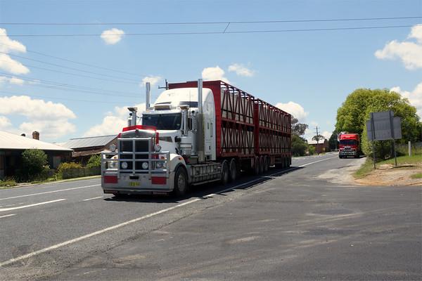 Capertee - Big White Truck
